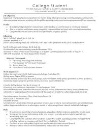 Vet Tech Resume Samples Veterinary Assistant Sample With No