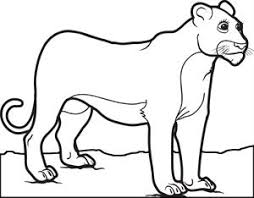 Female Lion Coloring Page