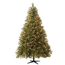 Christmas Tree Amazon Canada by Celebrate It Pre Lit Christmas Trees 7 5 Ft Pre Lit Jasper