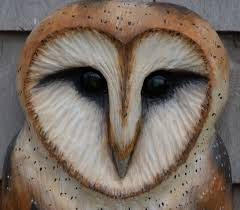 Beautiful Barn Owl - My Sister's Favorite... It Used To Be Mine ... 382 Best Barn Owls Images On Pinterest Barn Owl Photos And Beautiful My Sisters Favorite It Used To Be Mine Pin By Hans De Graaf Uilen Bird Animal Totem Native American Zodiac Signs Birth Symbolism Meaning Dreams Spirit 1861 Snowy Saw Whets 741 Owls Birds 149 Animals 2 Snowy Owl Necklace Ceramic Pendant The Goddess Touch Animism Youtube Pole Trollgirl Deviantart