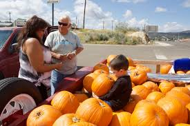 Columbus Pumpkin Patch by Perfect Pick Silver City Daily Press