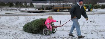 Christmas Tree Shops Near York Pa by Stokoe Farms U2013 Come And Join The Fun