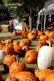 Pumpkin Patch Campground Hammond La by The 110 Best Images About Us North Dakota On Pinterest