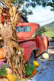 Pumpkin Patch Near Winston Salem Nc by 527 Best North Carolina U2022 In The Fall Images On Pinterest Trail