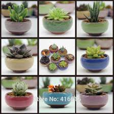 Glazed Flower Pots Wholesale