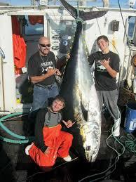 Wicked Tuna Boat Sinks by Wicked Tuna Turns Spotlight On Gloucester