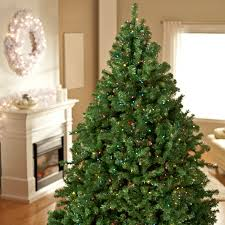 Snowy Dunhill Christmas Trees by Classic Pine Full Pre Lit Christmas Tree Hayneedle