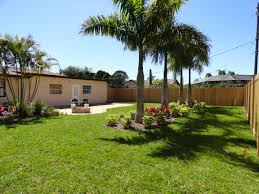 Update Your Landscaping Now Front Yard Landscaping With Palm Trees Faba Amys Office Photo Page Hgtv Design Ideas Backyard Designs Wood Above Concrete Wall And Outdoor Garden Exciting Tropical Pools Small Green Grasses Maintenance Backyards Cozy Plant Of The Week Florida Cstruction Landscape Palm Trees In Landscape Bing Images Horticulturejardinage Tree Types And Pictures From Of Houston Planting Sylvester Date Our Red Ostelinda Southern California History Species Guide Install