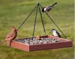 Platform bird feeder