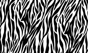 Animal Print Scrapbook Paper