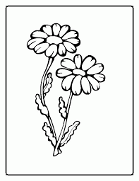 Tropical Flower Coloring Pages 300x388 Picture Animal