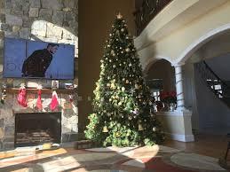 Prelit Christmas Tree Sets Itself Up by 12 Ft Carolina Pine Full Pre Lit Christmas Tree Hayneedle