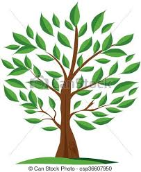 Green Olive Tree Vector For Labels