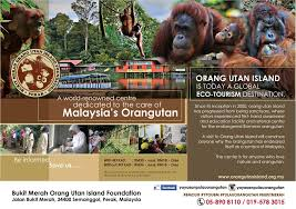 jalan bukit merah taiping 34400 bukit merah orang utan island foundation home