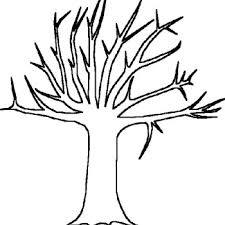 Tree Without Leaves Of Bare Coloring Pages Autumn