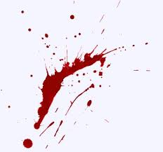 Remove Blood Stain From Carpet by Stain Removal Guide With Reference Chart And Recipes