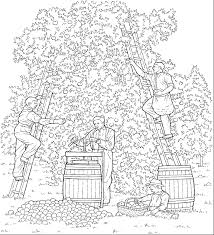 Home Coloring Pages Fall Apple Picking 3 Pickingapples3 54949 Bytes