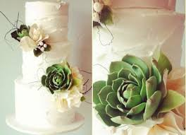 Botanical Wedding Cake With Succulents By Yummy Cupcakes And Cakes