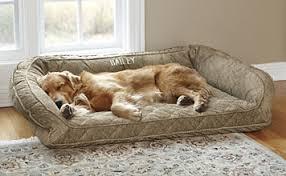 orvis bolster dog bed cover orvis bolster dog bed cover orvis