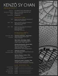 Professional Architect Resume Use This Template