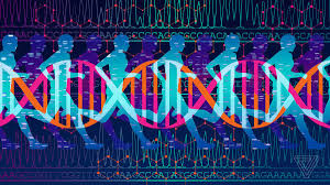 I Paid $300 For DNA-based Fitness Advice And All I Got Was Junk ... Ancestry Dna Coupons Best Offers For Day Sales 2018 Africanancestrycom Trace Your Find Roots Today Ancestrycom Coupon Promo Codes June 2019 Dna Test Coupon Ancestry Surf Holiday Deals Grhub Code November Monster Jam Atlanta Hour Blog Spot Ancestryhour Family Tree Dna Kohls Coupons Online For Sale Wants Your Spit And Trust Central Is Live The Genetic Genealogist Myheritage Review Intertional Alternative To Ancestrydna