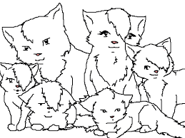 COLORING CONTEST Cat Family