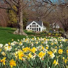 the works white flower farm