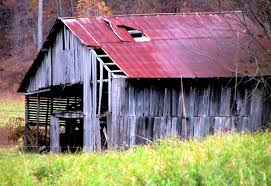 File:Abandoned Horse Barn In Autumn Fall.jpg - Wikimedia Commons Xlentcrap Barns Flowers Stuff 2009 In Vermont The Fall Stock Photo Royalty Free Image A New England Barn Fall Foliage Sigh Farms And Fecyrmbarnactorewmailpouchfallfoliagetrees Is A Perfect Time For Drive To See National Barn Five Converted Rent This Itll Make You See Red Or Not Warming Could Dull Tree Dairy Cows Grazing Pasture With Dairy Barns Michigan Churches Mills Covered Mike Of Nipmoose Engagement Beauty Pa Leela Fish Rustic Winter Scene Themes Summer Houses Decorations