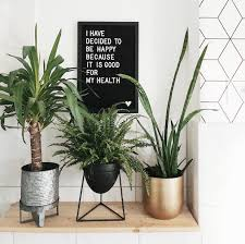 pflanzendeko bilder ideen