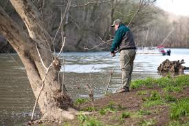 Ky Labor Cabinet Office Of Workplace Standards by Salt River White Bass Fishing Jpg