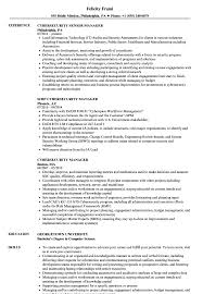Download Cybersecurity Manager Resume Sample As Image File