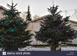 Crab Pot Christmas Trees by Christmas Tree Market Christmas Ideas