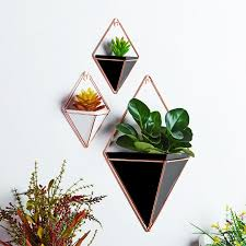 Rustic Wall Mount Hanging Triangular Geometric Metal Tillandsia Air Plants Holder Rack Black Accent Decor