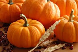 Tucson Pumpkin Patch by Patch At The Boardwalk The Boardwalk Towne Lake Cypress 22