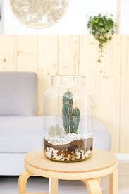 diy kakteen terrarium mit beton häuschen als deko