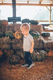 Atlanta Pumpkin Patch 2017 by Can We Have A Pumpkin Patch In Our Backyard U2013 The Southern Trunk