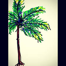 Palm Tree Drawings Color Becuo