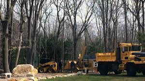 Land Clearing And Boulder Removal - Salem Trucking Winstonsalem North Carolina Familypedia Fandom Powered By Wikia I10 In The Hill Country 1 101913 Baylor Trucking Join Our Team Work Salem Dump Trucks Okosh Caterpillar Blue Rhino Nc Rays Truck Photos Leasing Truckdomeus Website Divi Gallery Cdl A Tanker Drivers Need No Tanke Bynum Transport Wi United Van Lines 1945 Chevrolet Master Services Tristate Crane