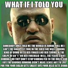 what if i told you somebody once told me the world is gonna roll