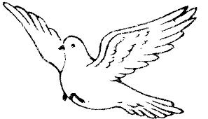 Dove clipart flight drawing 2
