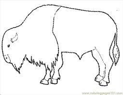 Tgiving Buffalo Coloring Page