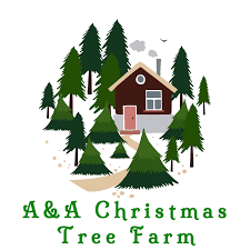Canaan Fir Good Christmas Tree by Welcome A U0026 A Christmas Tree Farm