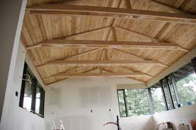 Insulated Cathedral Ceiling Panels by Painted Black Beams With White Tongue And Groove And Groove