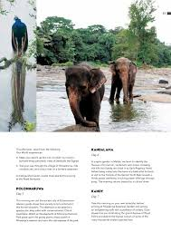 100 Skyward Fairmont Asian Explorations In 2020 Pages 51 100 Text Version