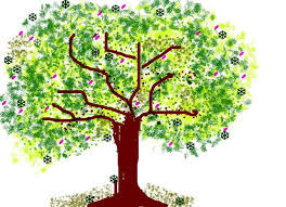 Tree Nature Drawing Trunk