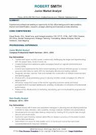 Sales And Use Tax Analyst Resume Junior Market Sample