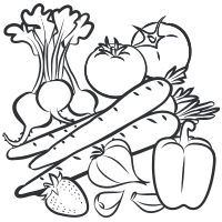 Fruits And Ve ables Sketch Vector In Black Doodle White
