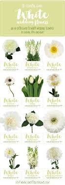 Save This Awesome In Depth White Wedding Flower Guide For Names Types Of