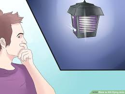 Flying Ants In Bathroom Window by How To Kill Flying Ants 12 Steps With Pictures Wikihow