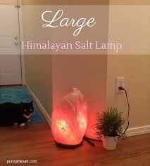 Himalayan Salt Lamp Amazon by Large Himalayan Salt Lamp The First Thing Our Guests Notice